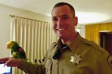 В США полицейские приехали на крики о помощи от попугая