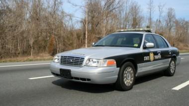 Настойчивая индейка в США несколько километров преследовала полицейских (ВИДЕО)