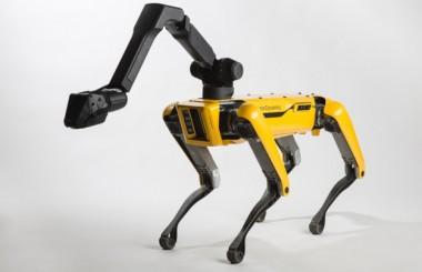 Американская собака-робот поступит в продажу (ВИДЕО)