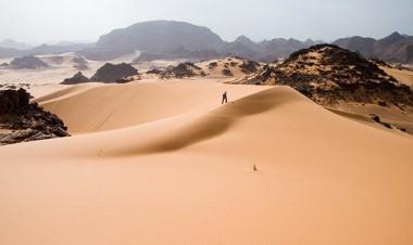 Учёные нашли способ озеленить Сахару