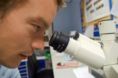 """Ученые предпринимают попытки создать """"измеритель боли"""""""