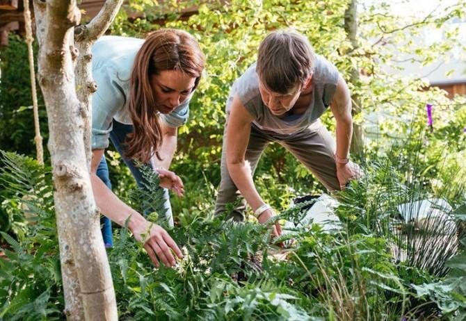 Кейт Миддлтон создала сад с голубыми незабудками в память о принцессе Диане (ФОТО)