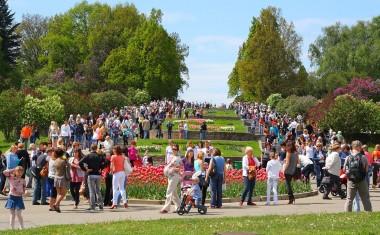 """Партия """"Слуга народа"""" проведет съезд 8 июня в Ботаническом саду"""