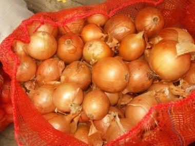 В Украине вновь взлетели цены на лук