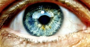 Учёные изобрели имплант, способный вернуть зрение слепым людям