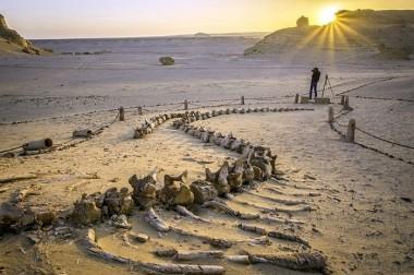 В египетской пустыне нашли кладбища неизвестных древних племен