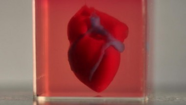 В США на 3D-принтере напечатали рабочее человеческое сердце