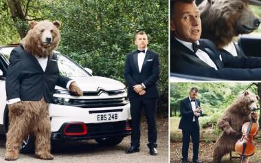 Реклама Citroen с медведем возмутила зоозащитников (ВИДЕО)