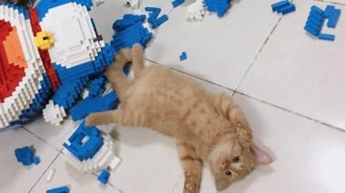 Кот разрушил фигуру кота из 2432 деталей лего