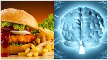 Ученые выяснили, какая еда нравится мозгу