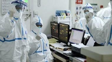 Китайские ученые начали разрабатывать вакцину от нового типа коронавируса