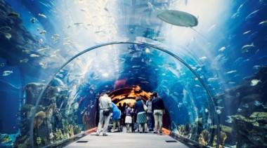 В Киеве построят подземный океанариум