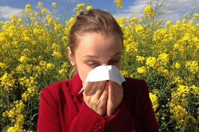Может ли COVID-19 проявляться аллергией на пыльцу
