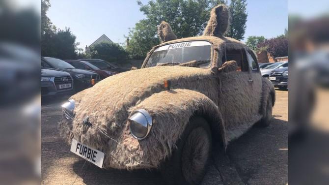 В Великобритании продают мохнатый Volkswagen Beetle