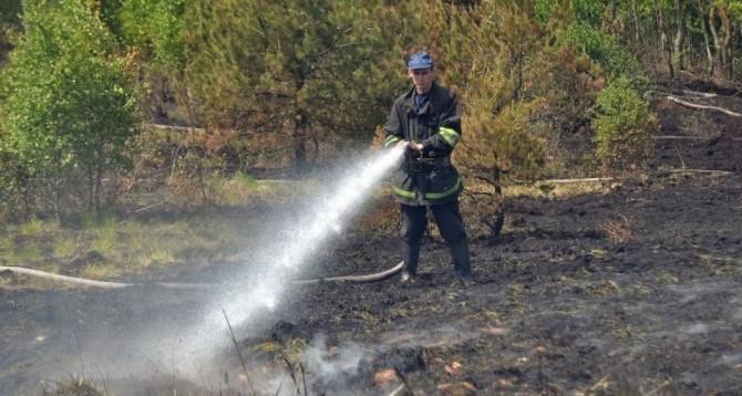 В Киеве горят торфяники