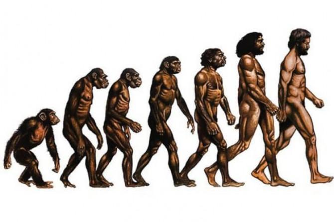 Учёные приоткрыли тайну происхождения жизни