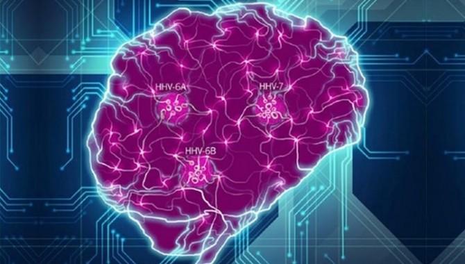 Ученые нашли связь между вирусом герпеса и болезнью Альцгеймера