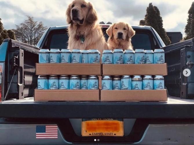 В США два ретривера развозят крафтовое пиво