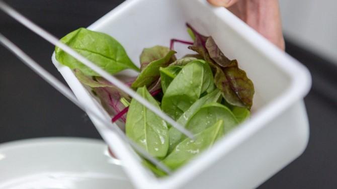 Британские ученые советуют гипертоникам есть шпинат