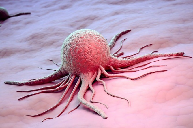 Эффективный способ борьбы с неизлечимым раком нашли в Испании