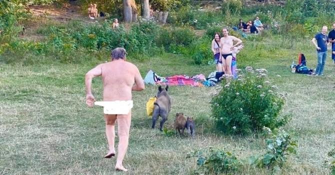 Дикие кабаны заставили нудиста бегать голышом в Берлинском парке (ВИДЕО)