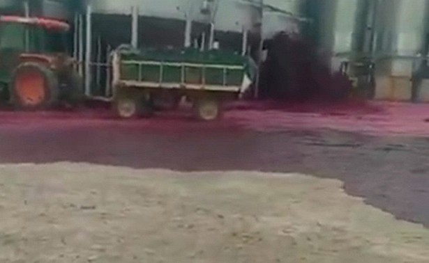 Завод в Испании затопило вином (ВИДЕО)