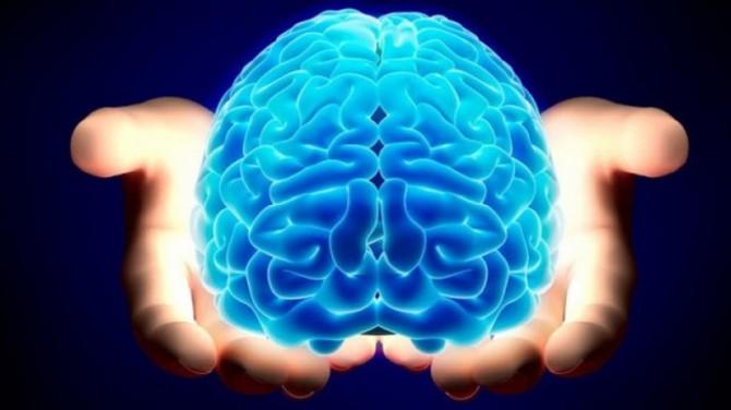 Ученые нашли новый способ побороть старение мозга у пожилых людей