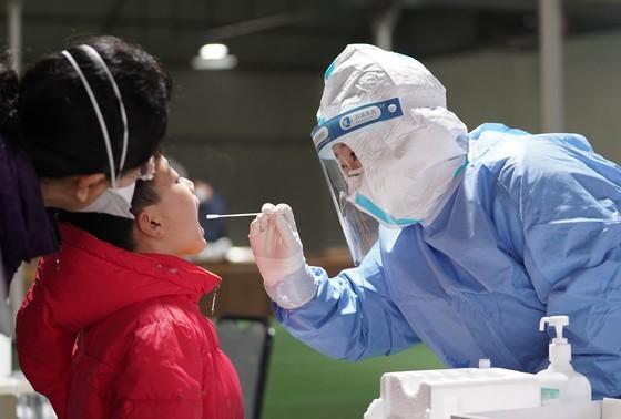 В Китае нашли более точный способ тестирования на COVID-19