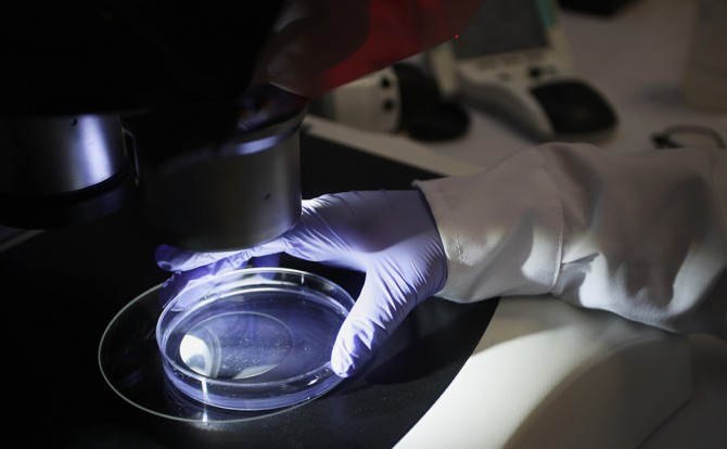 Британские ученые назвали новую версию происхождения коронавируса