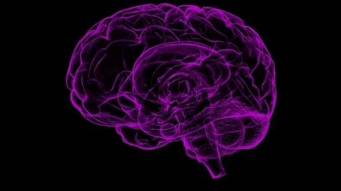 Ученым впервые в истории удалось подключить компьютер к мозгу человека