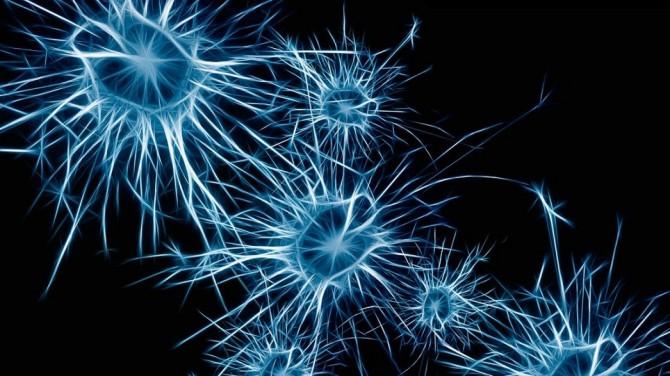 Корейские ученые создали искусственную нервную систему с реакцией на свет