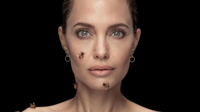 Анджелину Джоли облепил рой пчел