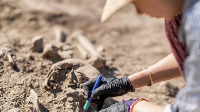 Норвежские археологи нашли затерянное поселение эпохи викингов