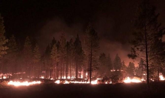 Масштабные лесные пожары бушуют в США (ВИДЕО)