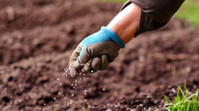 Ученые разработали экологичный метод производства удобрений