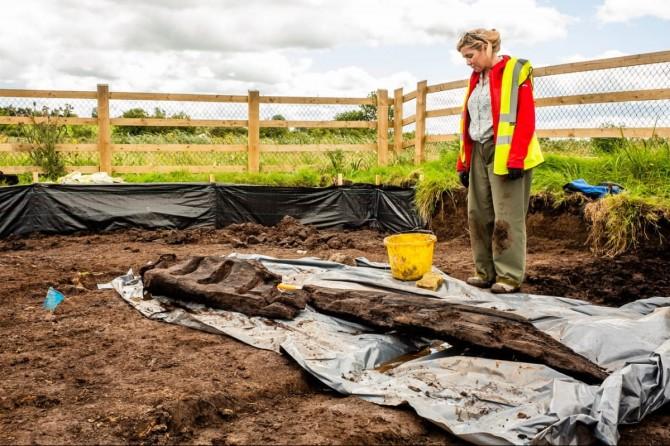Идол возрастом более 1500 лет нашли при прокладке дороги в Ирландии
