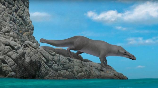 Египетские ученые обнаружили окаменелость необычного кита