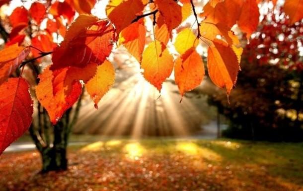 Синоптик рассказал, какой будет осень в Украине