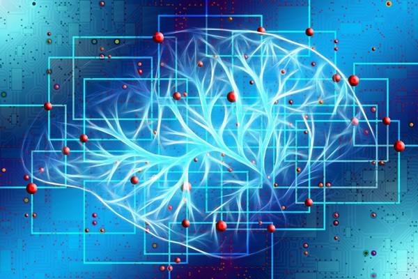Ученые Каунасского университета нашли способ выявлять болезнь Альцгеймера на ранней стадии