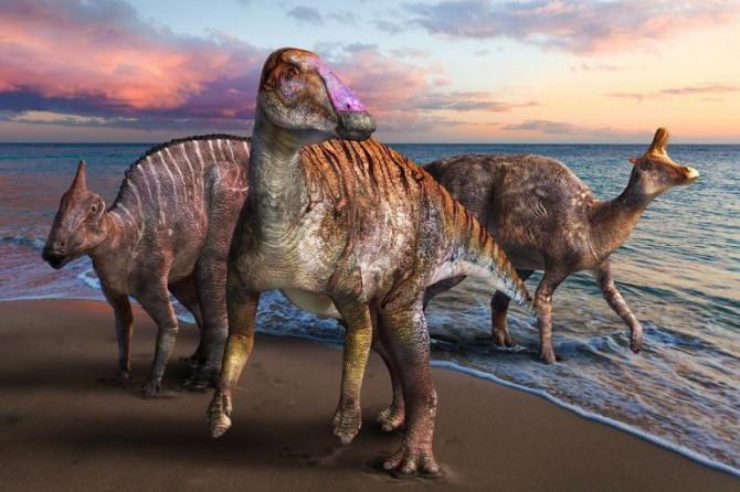 Японские ученые открыли новый вид хищных динозавров