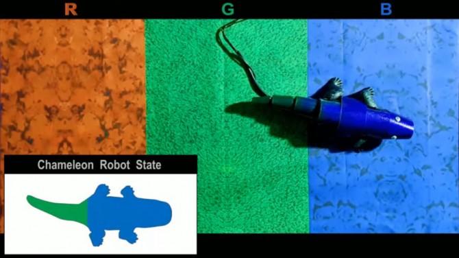 Южнокорейские ученые изобрели кожу-хамелеон (ВИДЕО)