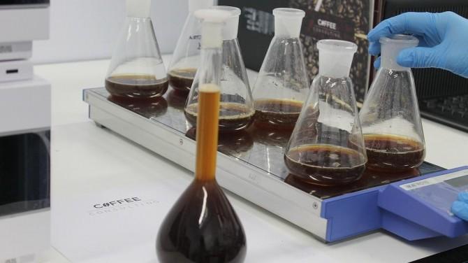 Ученым удалось вырастить кофе в пробирке