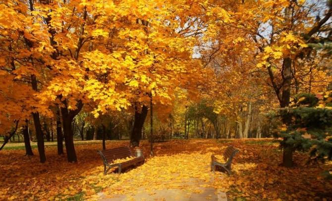 Начало октября в Украине будет холодным